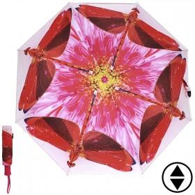 Зонт женский RST-3551,  R=56см,  суперавт;  8спиц-сталь+fiber,  3слож,  полиэстер,  (Красная стрекоза)  розовый 203851